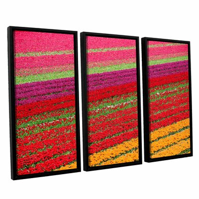 Floral Stripes II 3 Piece Framed Photographic Print Set Size: 24