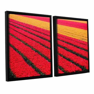 Floral Stripes I 2 Piece Framed Photographic Print Set