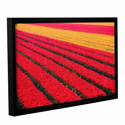 Floral Stripes I Framed Photographic Print