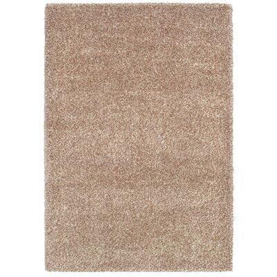 Cairns Bronze Area Rug Rug Size: 53 x 76