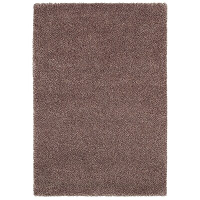 Moris Copper Area Rug Rug Size: Rectangle 53 x 76