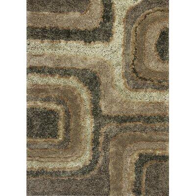 Tabiauea Textures Brown Area Rug Rug Size: 76 x 96