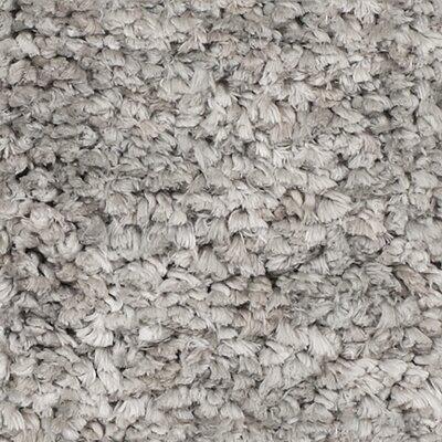 Fomalhaut Grey Area Rug Rug Size: 23 x 39
