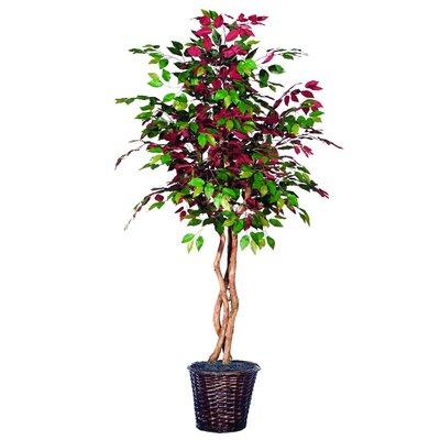 Artificial Capensia Heartland Foliage Tree in Pot