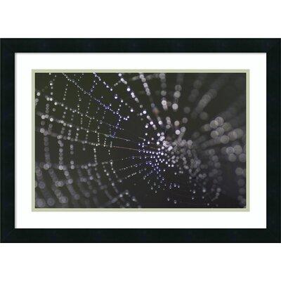 Kaleidoscope (Spider Web) Framed Graphic Art LATT2042 36959767