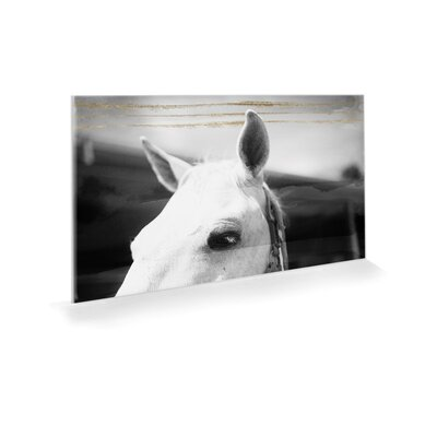 Equestrian Gold Photographic Print on Acrylic Size: 10