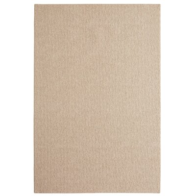 Bettie Hand-Tufted Taupe Area Rug Rug Size: 6 x 9