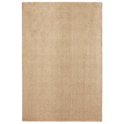 Bettie Hand-Tufted Blonde Area Rug Rug Size: 6 x 9