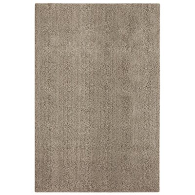 Bettie Hand-Tufted Taupe Area Rug Rug Size: 9 x 12