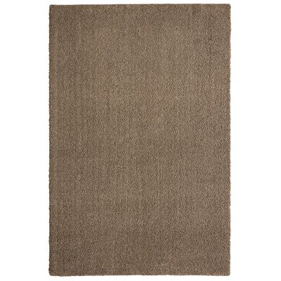 Bettie Hand-Tufted Brownstone Area Rug Rug Size: 6' x 9'