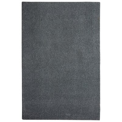 Bettie Hand-Tufted Slate Area Rug Rug Size: 6 x 9