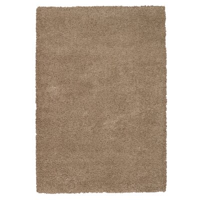 Shelley Oyster Area Rug Rug Size: Rectangle 53 x 75