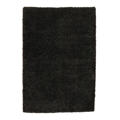 Shelley Dark Gray Area Rug Rug Size: 53 x 75