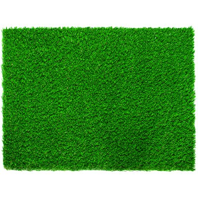 Tahoe Diamond Pro Spring Lawn Grass Turf Doormat