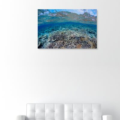 'Fijian Coral Scene' Photographic Print on Canvas Size: 10'' H x 15'' W x 1.5'' D