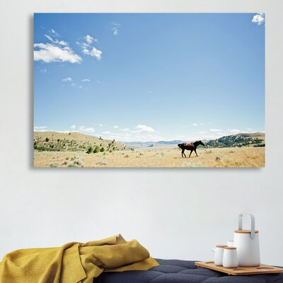 'Chase The Horse II' Photographic Print on Canvas Size: 10'' H x 15'' W x 1.5'' D
