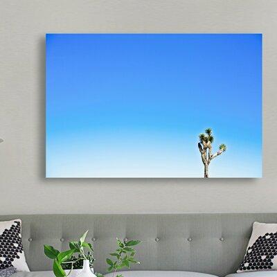 'Joshua Tree' Photographic Print on Canvas Size: 10'' H x 15'' W x 1.5'' D