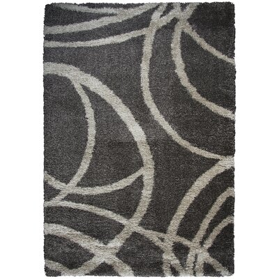 Thalia Brown Shag Area Rug Rug Size: Rectangle 53 x 73