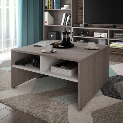 Frederick Storage Coffee Table with Magazine Rack Finish: Dark Gray/White