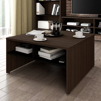 Frederick Storage Coffee Table with Magazine Rack Color: Dark Chocolate/Black