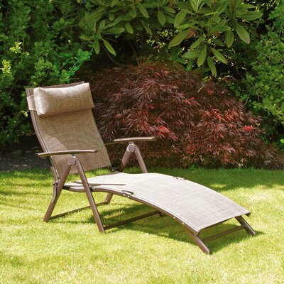 Burnstad Chaise Lounge Finish: Bronze