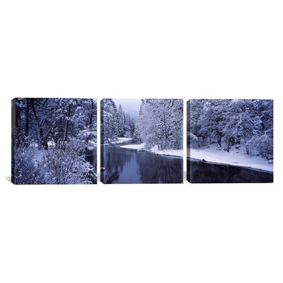 Snow-Covered Trees in Yosemite National Park, California 3 Piece Photographic Print on Wrapped Canvas Set Size: 12