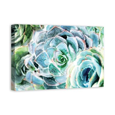 'Green Succulents' Watercolor Painting Print on Wrapped Canvas