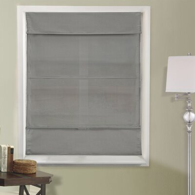 Natural Room Darkening Roman Shade Size: 26.5 W x 64 L, Color: Daily Gray