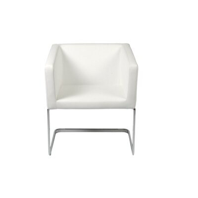 Amber Armchair Finish: White