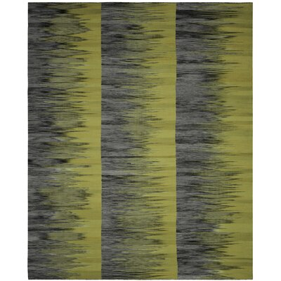 Amerina Hand-Woven Green/Charcoal Area Rug Rug Size: Rectangle 8 x 10