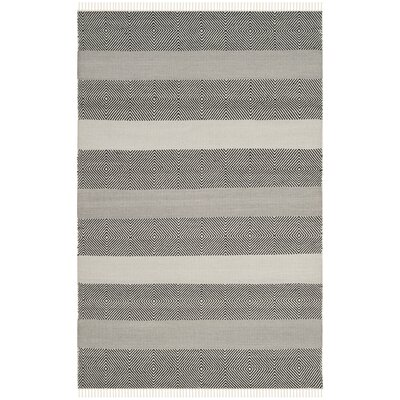 Amerina Hand-Woven Gray/Black Area Rug Rug Size: Rectangle 4 x 6