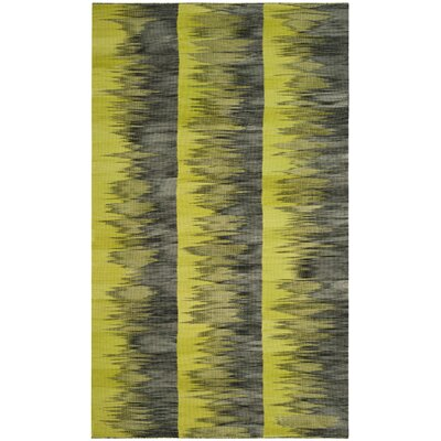 Amerina Hand-Woven Green/Charcoal Area Rug Rug Size: Rectangle 5 x 8