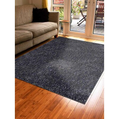 Ry Hand-Woven Blue Indoor/Outdoor Area Rug Rug Size: Rectangle�5 x 8