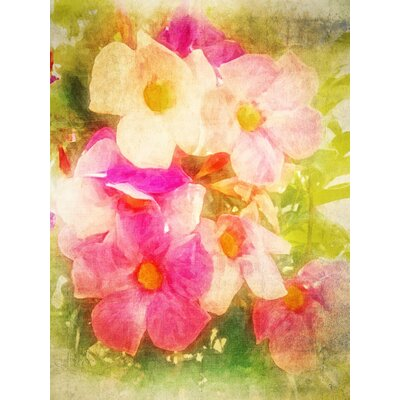 'Floral Sorbet' Graphic Art Print on Canvas