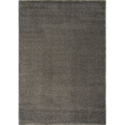 Stanley Glitz Low Pile Dark Grey Area Rug Rug Size: 53 x 77