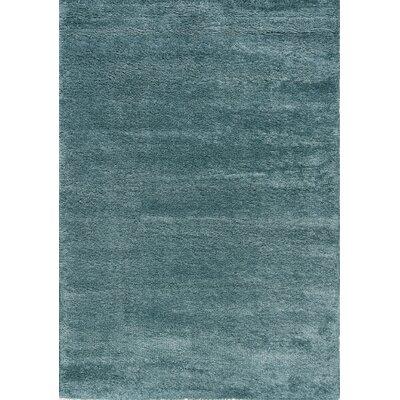 Bunderberg Sky Blue Solid Area Rug Rug Size: 53 x 77