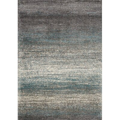 Bunderberg Gray/Blue Area Rug Rug Size: 53 x 77