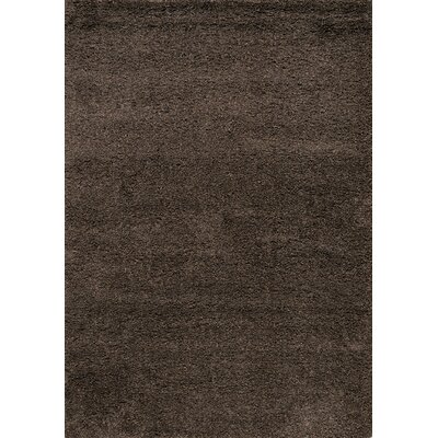 Barry Luxurious Dark Brown Area Rug Rug Size: 53 x 77