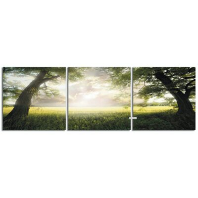'Under the Trees' Photographic Print Multi-Piece Image on Wrapped Canvas Size: 20
