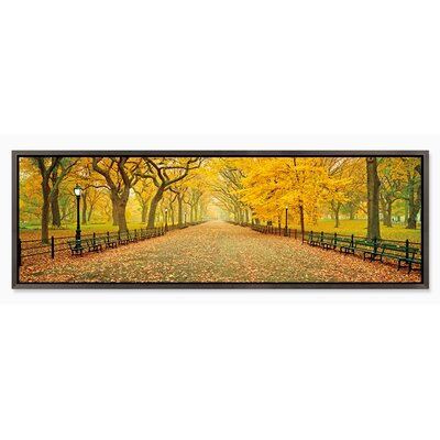 'Central Park (Autumn)' Framed Photographic Print on Wrapped Canvas