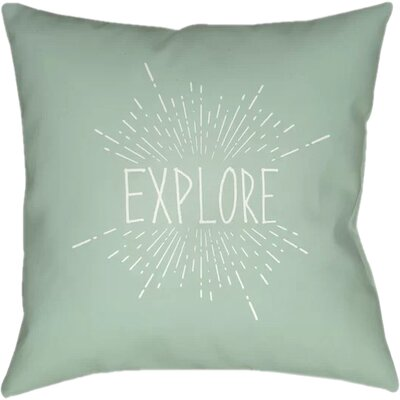 Marina Indoor/Outdoor Throw Pillow Size: 18 H x 18 W x 4 D, Color: Green