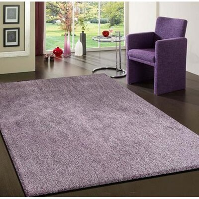 Vinci Hand-Tufted Purple Area Rug Rug Size: Rectangle 5 x 7