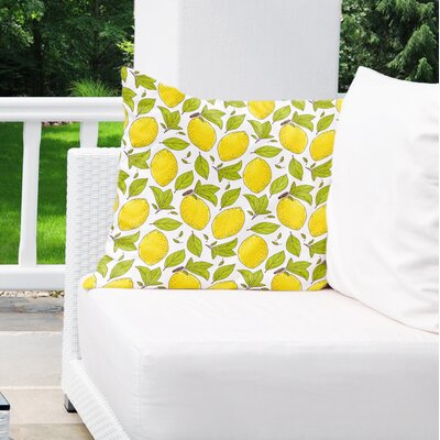 Cybil Lemons Indoor/Outdoor Throw Pillow Size: 18 x 18