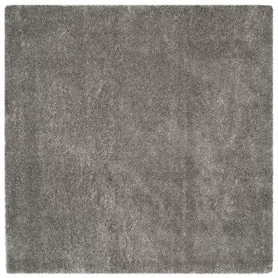 Schmitt Gray Area Rug Rug Size: Square 67