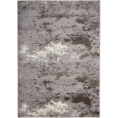 Alojzov Gray Area Rug Rug Size: Rectangle 53 x 74