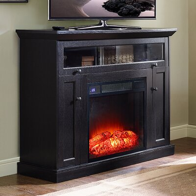 Deidre 46 TV Stand with Fireplace