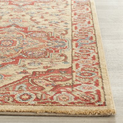 Clarion Red Area Rug Rug Size: 3 x 5