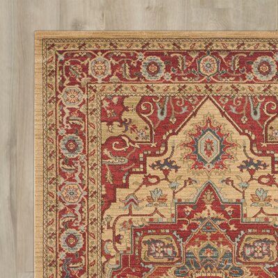 Clarion Red Area Rug Rug Size: 51 x 77