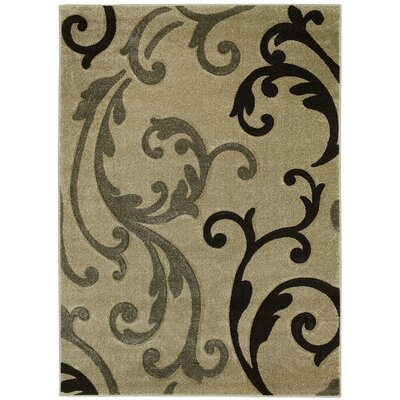 Floral Champagne Area Rug Rug Size: 8 x 11
