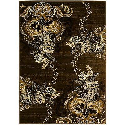 Brown Area Rug Rug Size: 5' x 7'